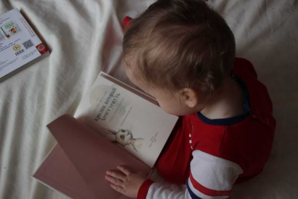 language and literacy activities for toddlers