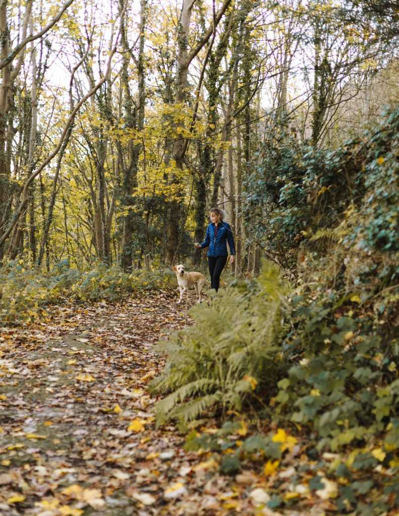 woman walking a dog on a leaf covered path in a forest